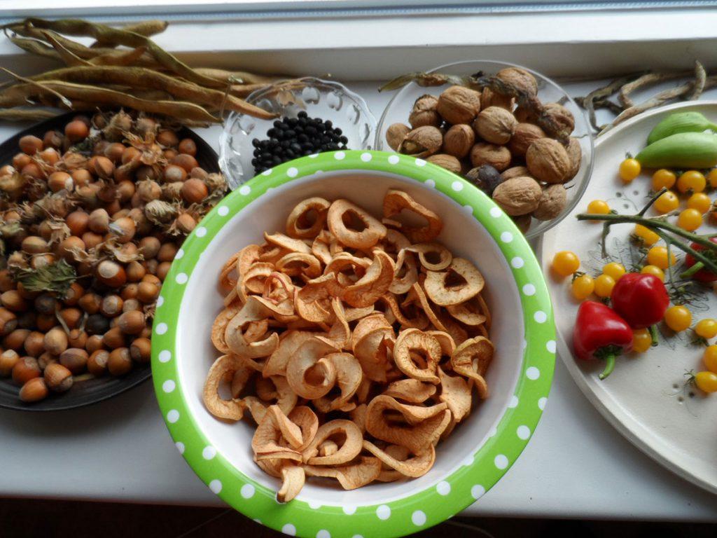 palmkool-oogsten-en-appels-drogen-7
